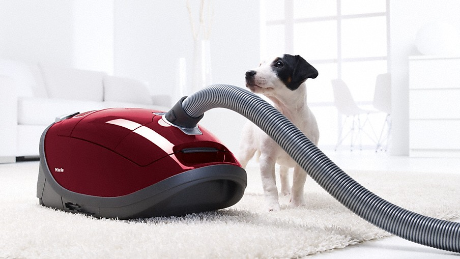 red vacuum and dog